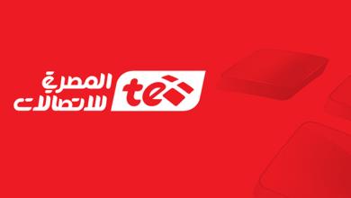 Photo of Telecom Egypt : New logo